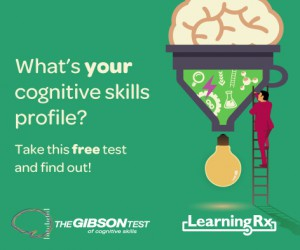 Gibson-Test-Facebook-Ad-v1